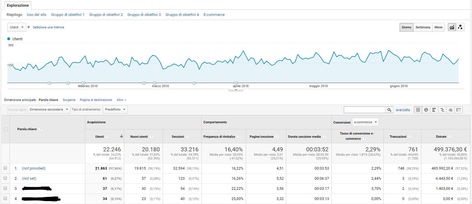 Traffico organico - Rapporto Google Analytics